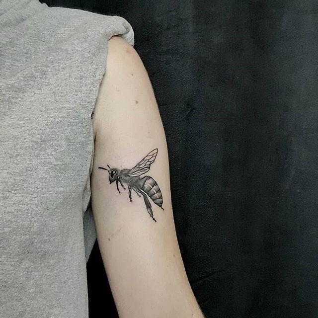 raphe tattoo abeille dotwork